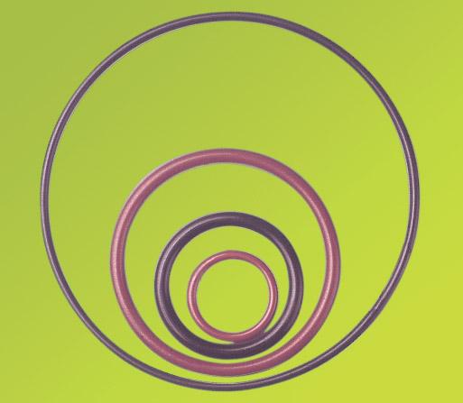 Ptfe O-ενεργειακός δακτύλιος